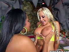 You will definitely get wet dreams after seeing this hot boobies video!.Two super boobs crushes together,as these lesbians kisses each other and sucks big bits