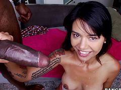 Amazing cutie Dana Vespoli shows her nice butt to some guy and lets him eat her holes. After that she sucks his BBC and they have ardent multiposition banging.