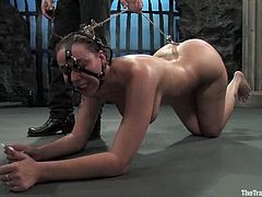 That is a reward for standing the humiliation. She gets tied up and slapped a bit and at the end honey is honored to blow that tasty dick.