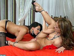 Gracious lesbian babes Cindy Hope and Sophie Lynx