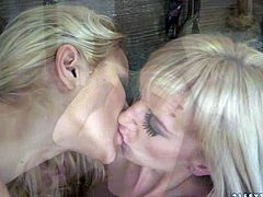 Chary Kiss and Alexa Wild are white lesbian lesbian kitties that cant keep their lips off each others sweet pussies. Watch skinny flat chested girl gets her twat tongue bu babe in stockings.