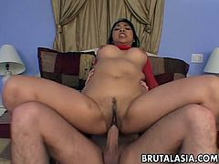 Asian anal hardcore with MILF Mika Tan