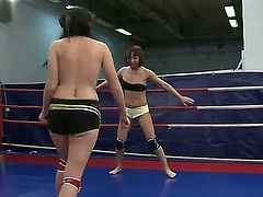 And here is another fighting action from two delicious lesbians Lexi Ward and Selina. They are fight for the sake of not being fucked by strap-on in the end. Looks quite cool!