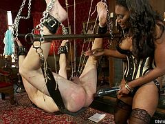 Unforgiving black bondage mistress