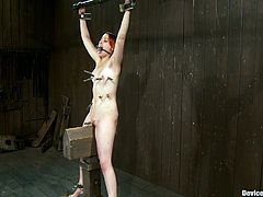 There's going to be extreme bondage and sybian riding action in this video with Sloane Soleil who enjoys and suffers the BDSM.