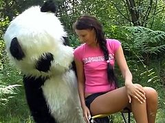 Sex in the woods nearly A giant toy panda