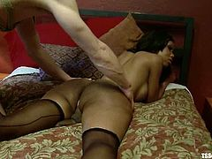 Tied up guy lies on a bed and gets fucked hard by ebony tranny in stockings. After that he sucks a dick and licks balls.