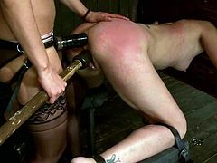 Sexy chick gets tied up and whipped rough. After that she gets her ass fucked with strap on and pussy toyed at the same time.