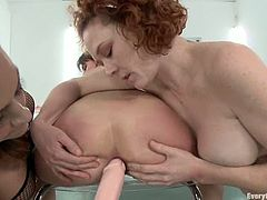 What a hot lesbian perversion this is! Three desirable and smoking hot babes are getting naked with each other to feel each other's hot cunts!