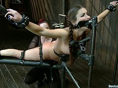 Hot brown-haired girl with pigtails gets chained. After that she gets her tits clothespined and pussy toyed with some big thing.