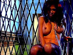 Charming bitch with great big boobs and sexy Latina-style face Alexis Amore performs in ultra-hot stockings rubbing her alluring pussy with a glass dildo!