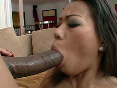 Frisky Asian slut kneels down in front of a huge black dude in order to oral fuck his massive thick dick with her tiny mouth before she sticks it inside her pussy for a ride in cowgirl style.