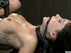 Gia Dimarco is the hot brunette with round tits featured in this extreme bondage BDSM porn video where she's also fucked a bit.