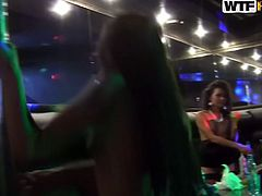 Drunk and horny strip dancers throw a wild group sex party right in the night club. Spoiled chic tongue fuck each other's pussies before they dance in seductive way on a dance floor.