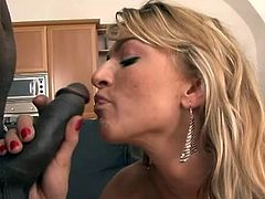 Milf Sophia likes only big things in her unshaved vagina. After she made her pussy roomy with that big glass dildo she receives a deep fuck from this black dude. He has a bbc and fills Sophia with it. See how much fun this whore has getting her hairy pussy fucked? Some jizz will look great on that cunt!