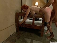 Amazing Audrey Hollander undresses and then a guy shoves a dildo in her ass. After that she sucks a cock and gets fucked rough.