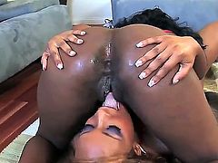 Watch the extremely hot, great-looking and so cool lesbian porn scene with two ebony chicks Jordan Love and La Foxxx. Babes stay nude before licking and dildoing.