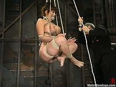 Stunning brunette chick with big boobs gets tied up and gagged. After that she get s hosed and toyed. Then she also gets drowned in an aquarium.