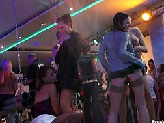 Tainster site performs you one another hardcore party video featuring a lot of drunk bitches. They dance and fondle each others bodies. Enjoy them all for free.