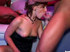 Three insatiable chics sit in a row waiting for their oversized tits to be frosted with hot cum after blowjob, while other hussies are busy riding horny dicks and giving them a head in sultry group sex orgy by Tainster.