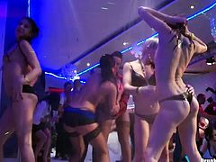Group of aroused hussies in seductive lingerie and stockings get their steamy bodies sprayed with cold water before they start petting on the scene.