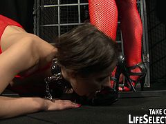 Insatiable blond mistress Kathia Nobili in steamy BDSM-styled costume and fishnet stockings gives face sitting to submissive hussy before she pounds her snatch with strap on and dildo and teases her clit with vibrator.