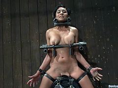 Horny Beretta James gets tortured and humiliated