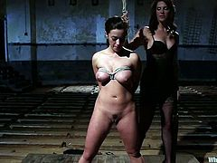 Adorable brunette babe gets tied up and gagged. After that she gets fucked nice and deep with the strap-on by Bobbi Starr.