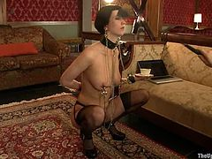 Kinky brunette girl in stockings and high heels in hot bondage video. The guy fixes a claw to her pussy and tits.