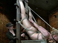 Fair-haired cutie Tracey Sweet gets bound and tormented in a basement. Some hot mistress plays with Tracey's vag and fucks it hard with a dildo.