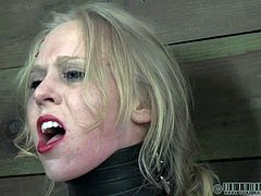 Check out this hot blonde getting bonded to the wall and tortured. Her nipples are squeezed, while she is ryding the sybian!