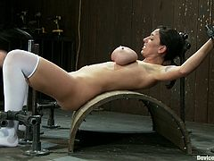 Alia Janine is the girl with the huge tits featured in this BDSM video where she gets bound, toyed and tortured for your twisted pleasure.