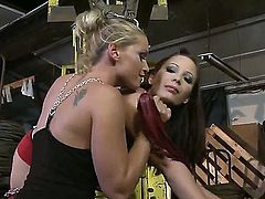 Wonderful teens Kathia Nobili is being fucked by the harsh mistress Zyna Baby that is fucking roughly her sweet girlfriend. Enjoy the hot lesbian video.