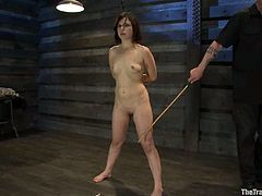 Naughty brunette chick gets tied up and whipped. After that she gives a blowjob standing on her knees. Later on she gets massive facial.
