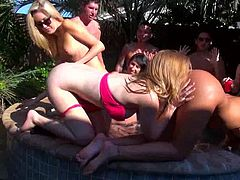 Wild babes fucking in group action