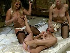 Cherry Torn, Lorelei Lee and two more girls are having a crazy hen party. They all pet each other and then fuck each other's cunts with toys.