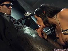 Smoking hot brunette babe Rio Lee has the most amaxing big tits with pierced nipples. In this video she wraps her lips around a big hard cock and gives  a hot and steamy blowjob.