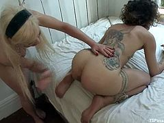 Bianca Stone and Joanna Jet are having some good time together. The tranny strokes the bitch's body and then fucks her twat in missionary position.