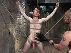 There's cock sucking and ass fucking in this gay video with lots of BDSM stuff going on as one gay guy dominates the other with ropes.