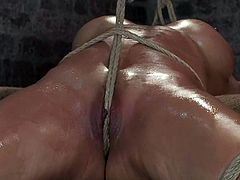 Hungry Asian babe gets arched and tugged with ropes