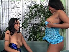 Two sexy chocolate babes are sitting on the couch relaxing in sexy lingerie. They pull out each other's boobs and begin to rubs each other's breasts and lick each other's nipples. One of the cute ebony babes rubs her pussy and guides her girlfriend's face into her vagina so she can get cunnilingus.