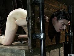 Check out this super hot bondage scene with this fucking submissive brunette bitch as she takes on that punishment like a fucking champ!