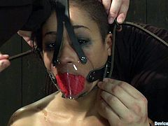 A couple of hot chicks suck dick and swallow jizz in this kinky bondage sex scene that you cannot miss cus it's fucking great! Check it out!