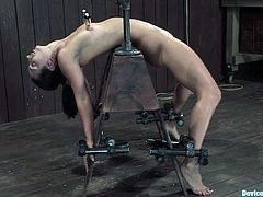 She gets nipple clamps attached to weight at the other end that yank her nips while she's bound by bondage machine! Check it out!