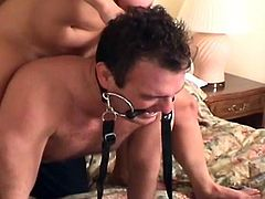 Horny babes are having intense threesome femdom porn along hunk who gets humiliated
