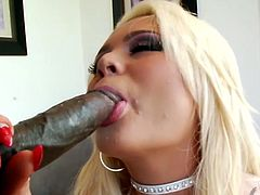 Cum addicted blondie in pink stuff looks gorgeous. She plays with her huge boobs on the floor. Lucky bitch with nice butt wins a stiff black dick, which zealous nympho with heavy makeup sucks passionately for sperm right away.