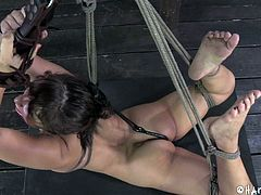 tied, ball gagged and ready for punishment