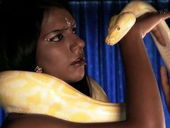 Her body is like a chocolate. Sexy brunette from India is a hot babe who has gutts to play and tame a yellow python all naked.