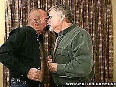 hot silverdaddy fucks his mature friends ass with his cock