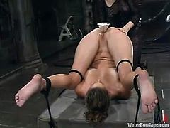 Pretty brown-haired chick is having fun with a dominatrix in a basement. She lets the mistress bind her and then gets fucked with a dildo and drowned.